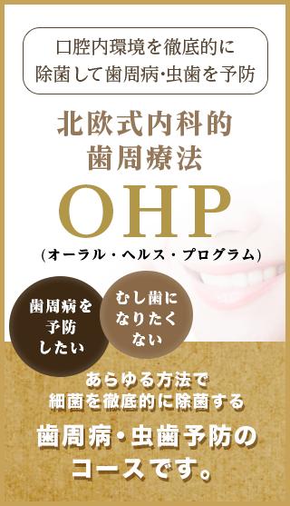北欧式内科的歯周療法OHP